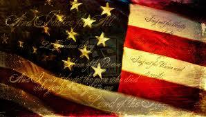 steven anderson american flag