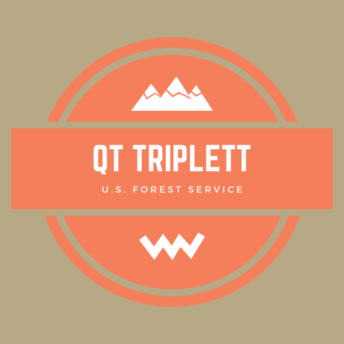 QT Triplett